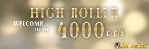 300x100highroller